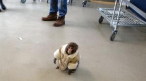 ikea-monkey-thumb